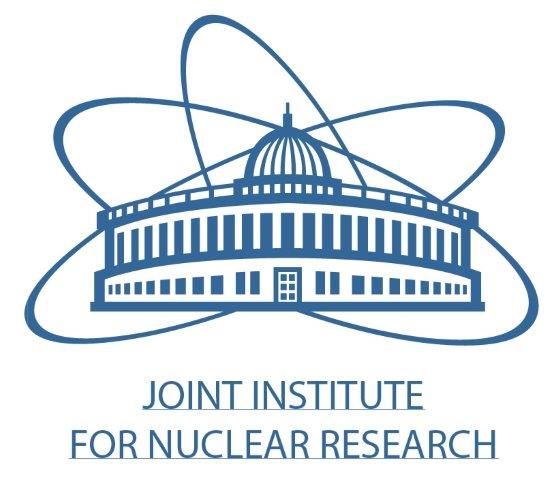 Logo Joint Institute for Nuclear Research (JINR) Expo-Russia Vietnam 2017